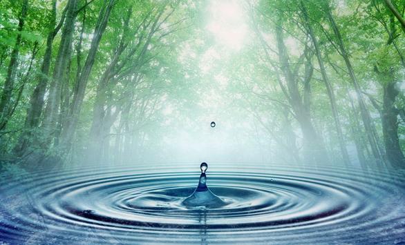 Ce inseamna purificarea apei prin osmoza inversa?